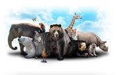 Amigos animales de zoológico — Foto de Stock