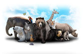 Zoo Animal Friends — Stockfoto
