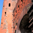Royalty-Free Stock Photo: Turin, The Palatine Towers