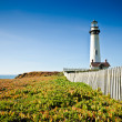 Stock Photo: Fenceline And Lighthouse