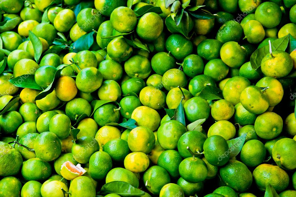 Fresh picked limes in a crate ready for market  Stock Photo #8961304