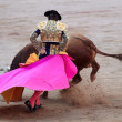 The bullfighter — Stock Photo