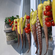 Stock Photo: Polyps and peppers hung out to dry on a Greek island