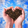 Coffee fragrant heart — Stok Fotoğraf #9382862