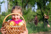 Girl and basket of apples, harvest — Stock Photo