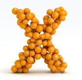 Letter X, font of orange citrus, white background — Stock Photo