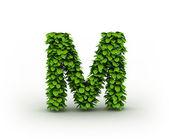Letter M, alphabet of green leaves — Stock Photo