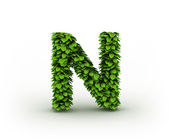 Letter N, alphabet of green leaves — Stock Photo
