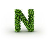 Letter N, alphabet of green leaves — Stock Photo