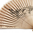 Royalty-Free Stock Photo: Chinese fan