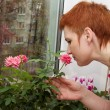 The smell of roses - Stock Photo