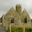 Stock Photo: Landscape of Ross Friary Ireland.