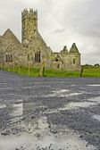 Ross Friary, County Galway, Ireland — Stock Photo