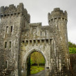 Ashford castle gate - Stock Photo