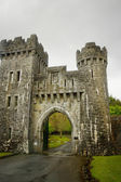 Ashford castle gate — Stock Photo