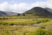 Landscape of Ireland — Stock Photo