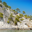 Landscape of Gargano's coast — Stock Photo
