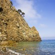 The beach of the island of Elba — Stock Photo #9394148