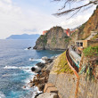 Cinque Terre, Liguria, Italy — Stock Photo #9883962