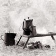 Stock Photo: The camp stove