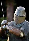 A Knight — Stock Photo