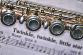 Fluitmuziek — Stockfoto