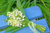 Lily of the valley — Stock Photo