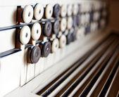 Fisarmonica — Foto Stock
