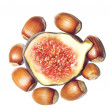 Fig and hazel-nuts isolated on white background — Stock Photo