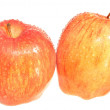 Two whole apple — Foto de Stock