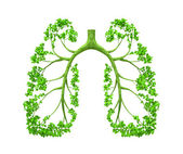 Lungs - tree — Stock Photo