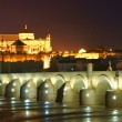 ILluminated Cathedral-Mosque of Cordoba at the blue hour, Andalusia, Spain — Stock Photo