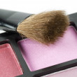 Blusher and brush — Stock Photo #9014924