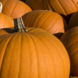Stock Photo: Group of halloween pumpkins