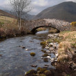 Mountain Stream flowing under a stone bridge — Stock Photo