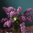 Stock Photo: Still life with lilac flowers