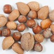 Royalty-Free Stock Photo: Nuts on white