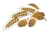 Hopfen und Weizen — Stockvektor