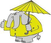 Elephant In A Raincoat — Stock Photo