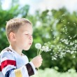 Beautiful Boy in the park blowing on dandelion — Stock Photo #10032574