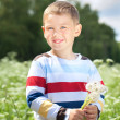 Foto Stock: Boy holds a dandelions in hands