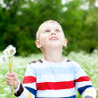 Boy holds a dandelions in hands — 图库照片