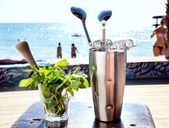 Bar accessories with inox shaker — Stock Photo