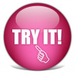 Try it button — Stock Photo #10666013