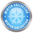 Winter collection — Stock Photo #9653243