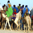 Royalty-Free Stock Photo: Man riding behind a group of Tuareg on camels