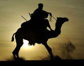 Silueta tuareg rider a velbloudí stoupá — Stock fotografie