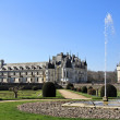 Chenonceau fountain — Stock Photo
