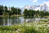 Arpy lake in Valle d'Aosta , Italy — Stock Photo