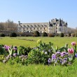 Chenonceau chateaux - Stock Photo